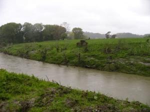 The Whangaehu river