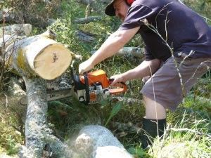 See, daddy hard at work with his chain saw.