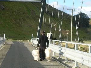 Walking over Polson bridge
