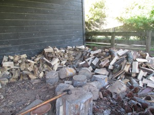 See lots of chopped wood