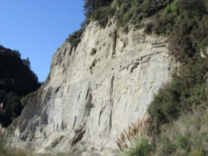 The shale cliffs, the sign was warning about.