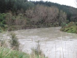The Whangaehu River at McCain's cutting