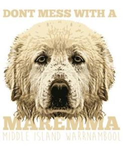 Don't mess with a maremma