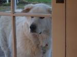 Me looking through the door