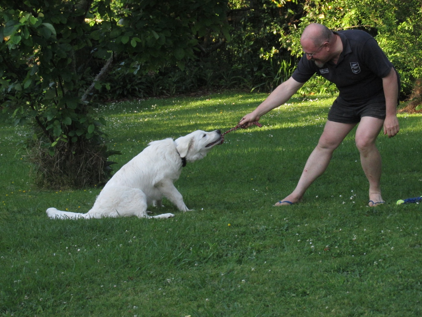 Now that the weather is getting warmer, Me and Daddy like to play a new  game outside on the lawn.